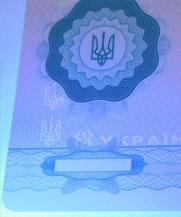 Диплом - свечение УФ (Павлоград)